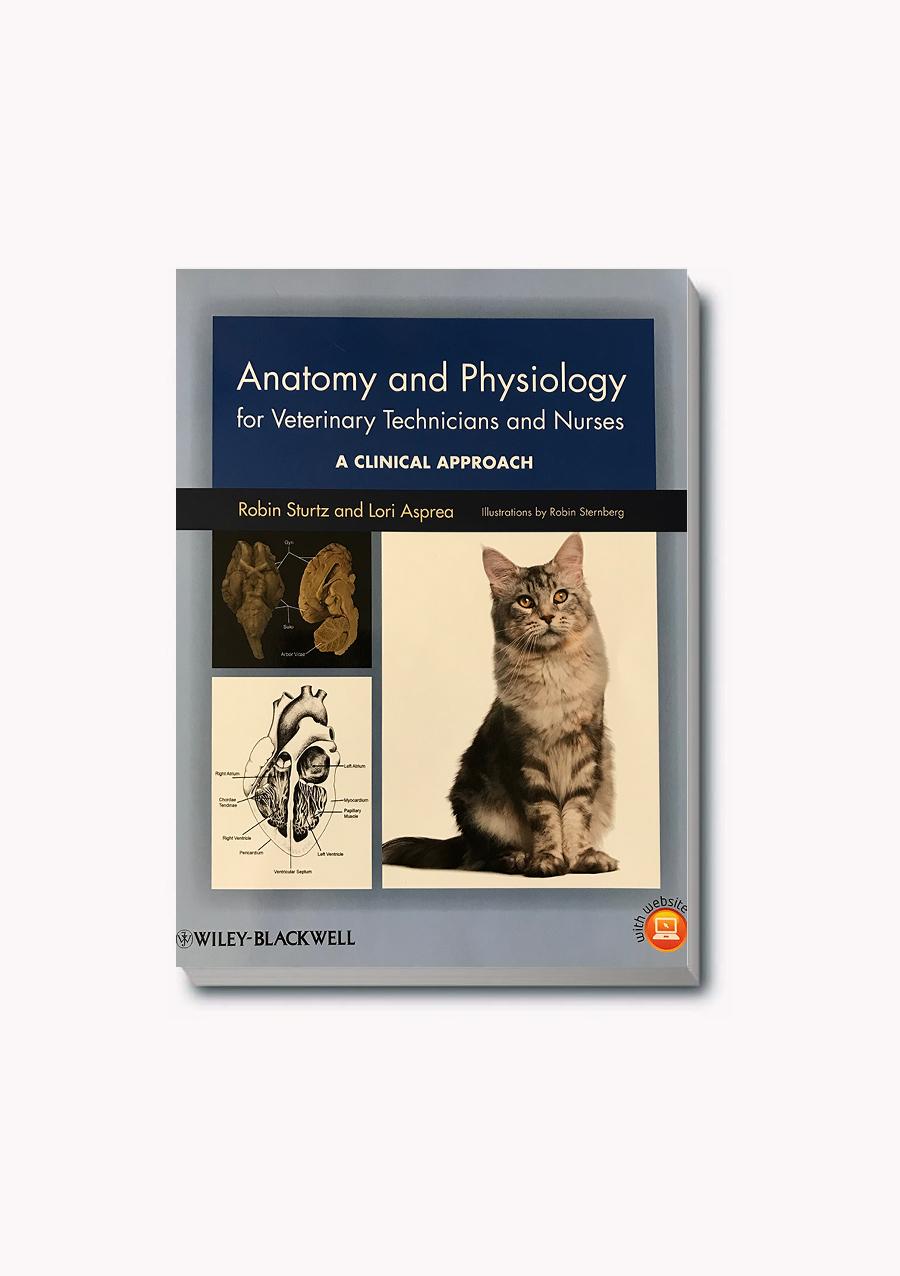 Hermosa Animal Physiology And Anatomy Colección - Imágenes de ...